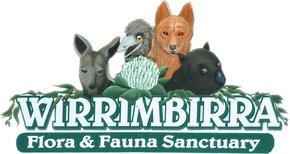 Wirrimbirra Sanctuary - Attractions
