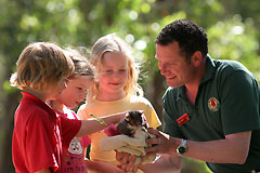 Cleland Wildlife Park - Attractions