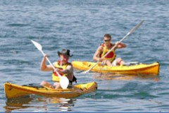 Manly Kayaks - Attractions