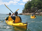 Sydney Harbour Kayaks - Attractions