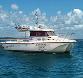 Sunshine Coast Fishing Charters - Attractions