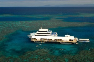 Sunlover Reef Cruises - Attractions