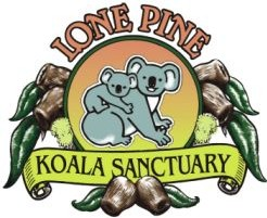 Lone Pine Koala Sanctuary - Attractions