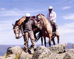 High Country Horses - Attractions