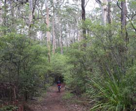 Margaret River Rails Trail - Attractions