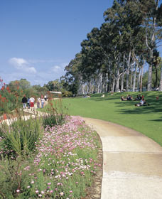 Kings Park Free Guided Walks