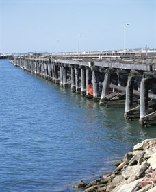 Old Timber Jetty - Attractions