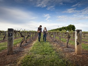 Coonawarra Wineries Walking Trail - Attractions