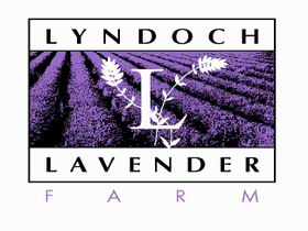 Lyndoch Lavender Farm and Cafe - Attractions