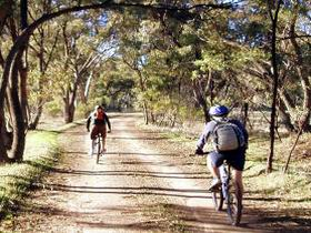 Bike About Mountain Bike Tours And Hire