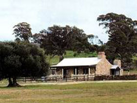 Fernfield Wines - Attractions
