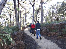 Bridport Walking Track - Attractions