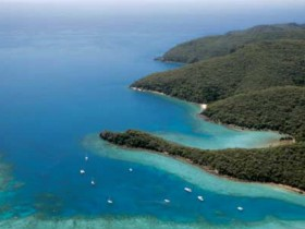 Butterfly Bay - Hook Island - Attractions