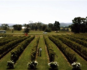 Rochford Wines - Attractions