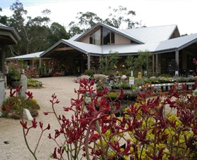 Kuranga Native Nursery and Paperbark Cafe - Attractions