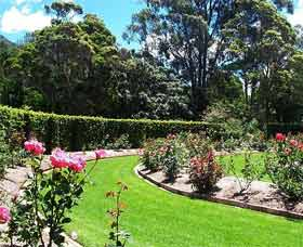Wollongong Botanic Garden - Attractions