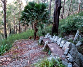 Wodi Wodi Walking Track - Attractions