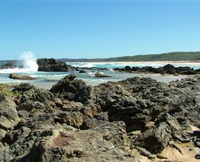 Coastal Walks - Bermagui - Attractions