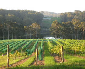 Tilba Valley Wines