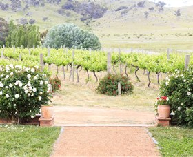 Brindabella Hills Winery - Attractions