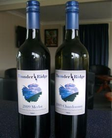 Thunder Ridge Wines - Attractions