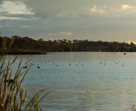 Lake Inverell Reserve - Attractions