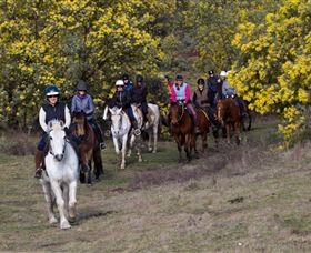 Burnelee Excursions on Horseback - Attractions
