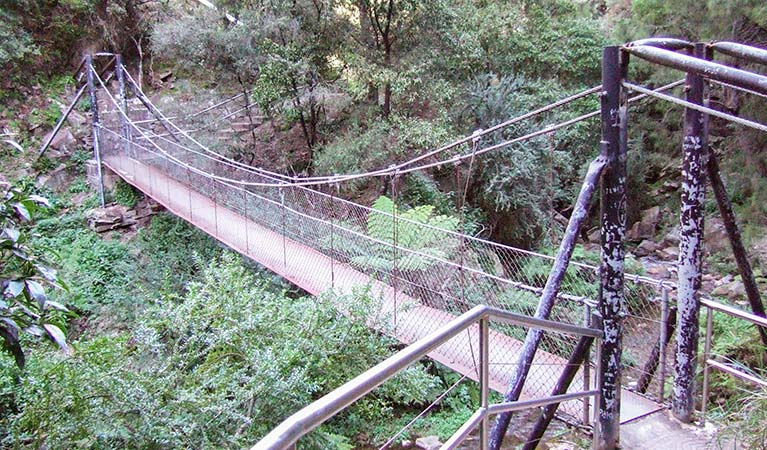 Jenolan River walking track