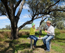 Restdown Wines and Walking Trail - Attractions