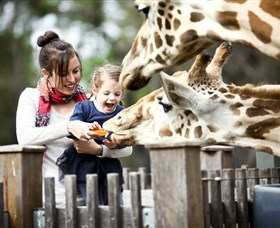 Taronga Western Plains Zoo Dubbo - Attractions