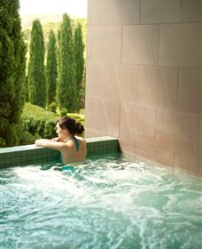 The Mineral Spa - Attractions