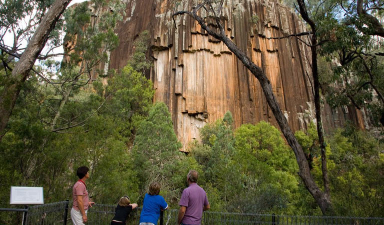 Sawn Rocks walking track - Attractions