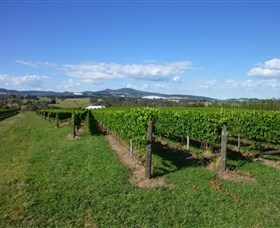Hedberg Hill Wines - Attractions