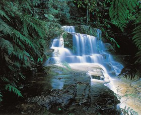Leura Cascades - Attractions