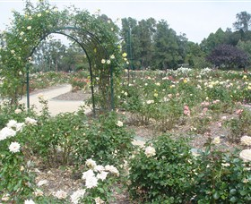 Victoria Park Rose Garden - Attractions