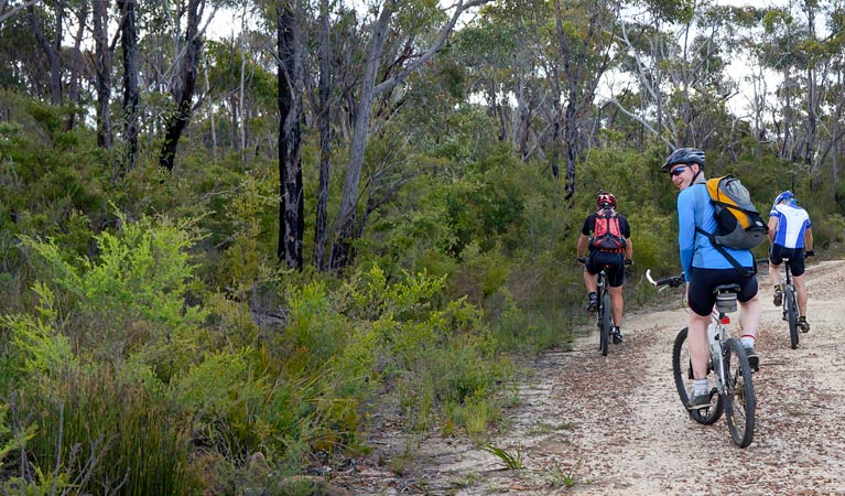 McMahon's Point ride - Wentworth Falls - Attractions