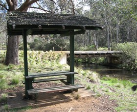 Barrington Tops State Forest