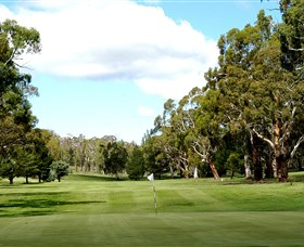 Cooma Golf Club - Attractions