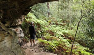 Dharug National Park - Attractions