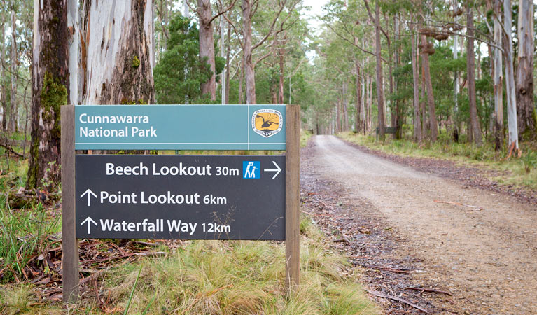 Beech lookout - Attractions