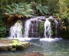 Barrington Tops National Park Walks