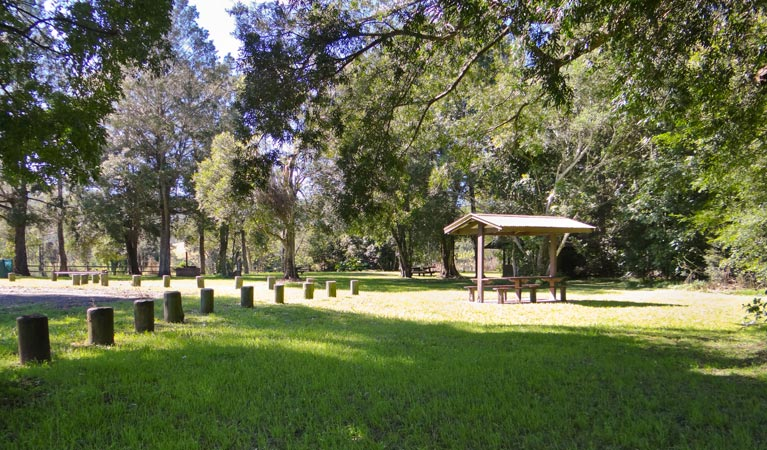 Moore Park picnic area - Attractions
