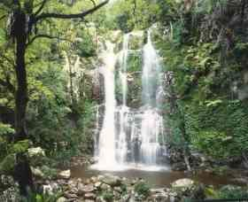 Budderoo National Park - The Falls Walk - Attractions