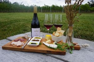 Artemis Wines - Attractions
