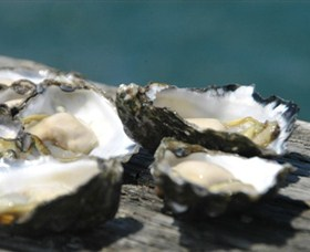 Jim Wilds Oyster Service - Attractions