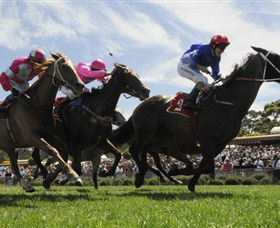 Moruya Racecourse - Attractions