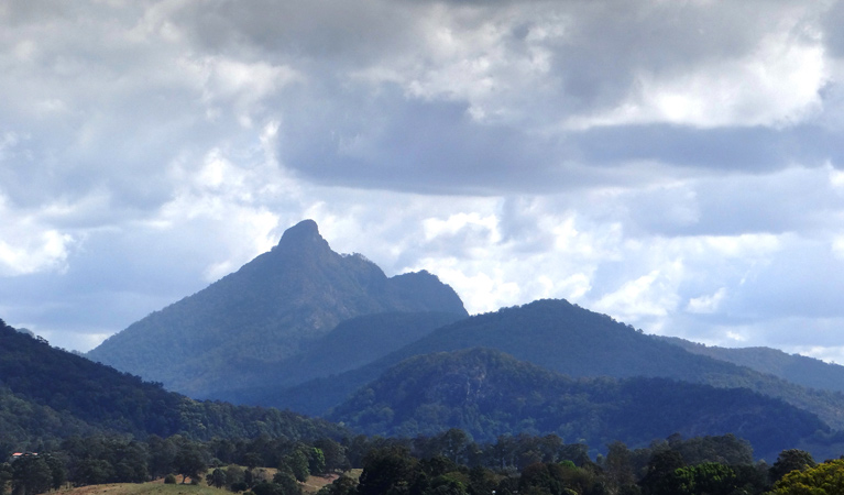 Wollumbin National Park - Attractions