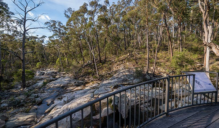 Myanba Gorge walking track