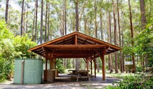 Bongil picnic area - Attractions