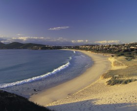 Forster Town Beach - Attractions